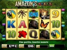 amazon Gioco Base (Medium)