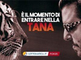 lottomatica tigri